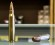 Image: Gun shop in wake of Connecticut school shooting