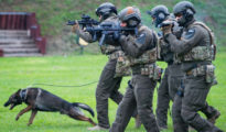 Harci kutya gyakorlaton