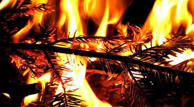 Karácsonyfa, tűz