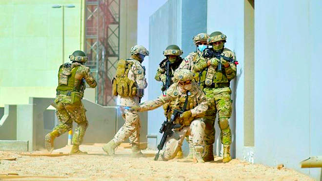 Egyiptomi - szudáni hadgyakorlat